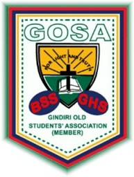 Official GOSA Logo (BSS and GHS)